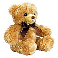 adorable teddy bear to add the finishing touch to