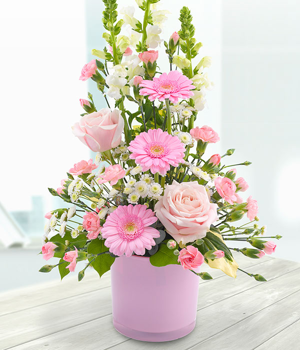 pink roses germinis carnations and antirrhinums an