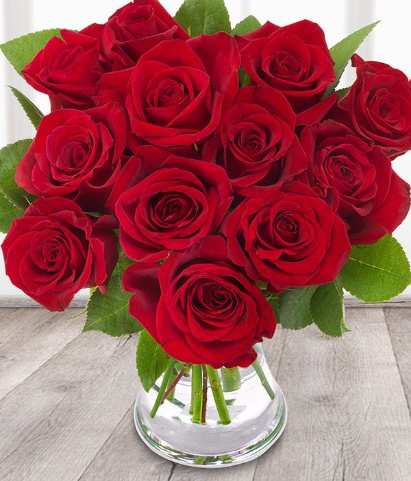Red Roses 12 Red Rose Bouquet Order Flowers Online